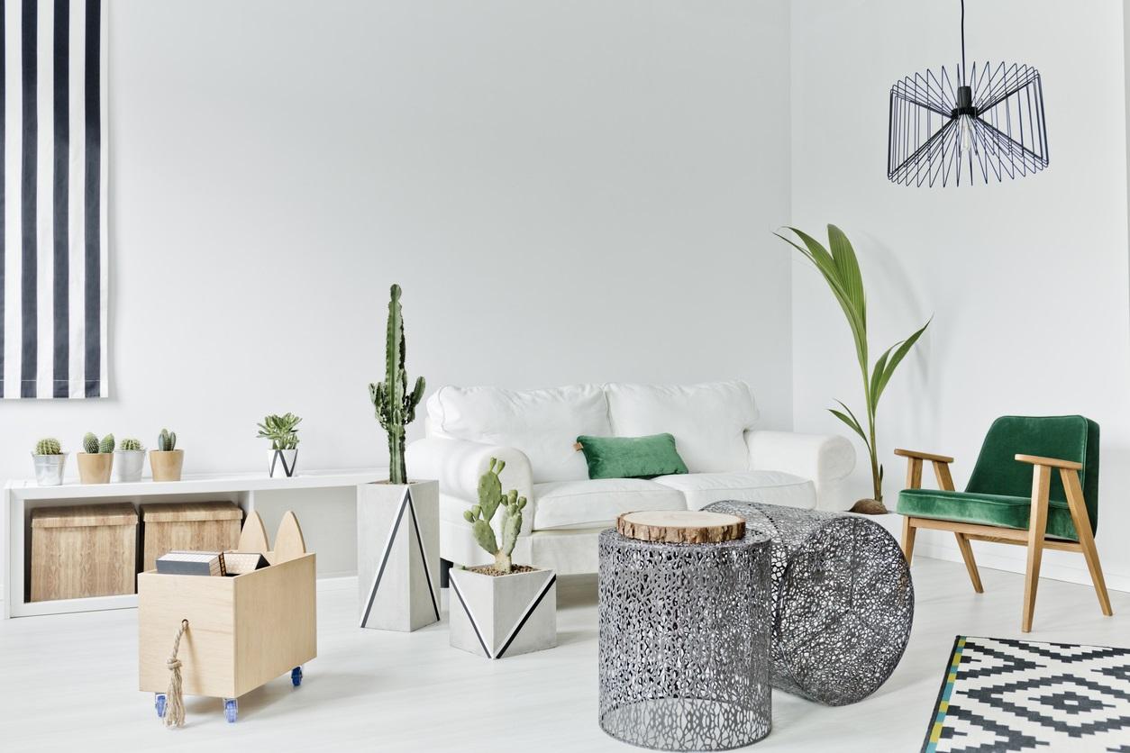 Deco scandinave salon vert et blanc