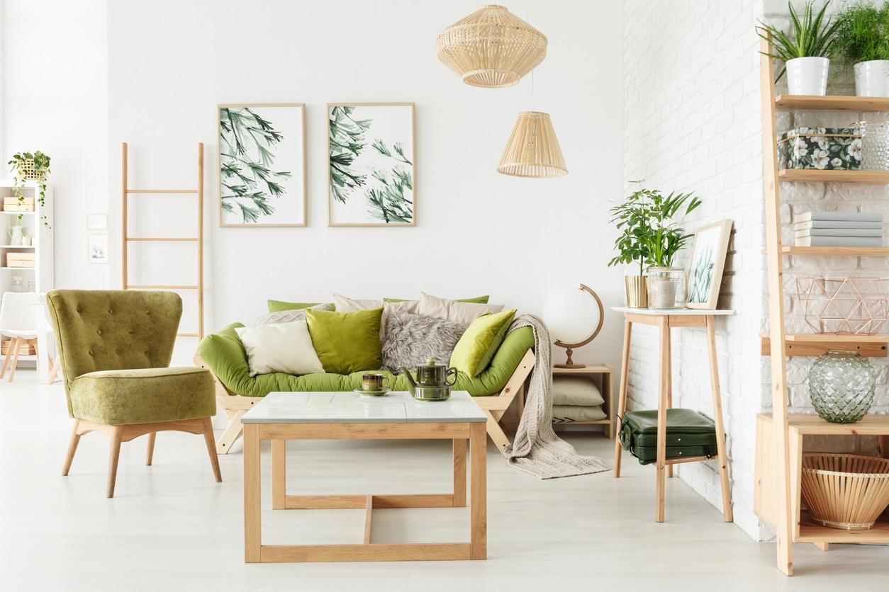 Deco scandinave salon vert