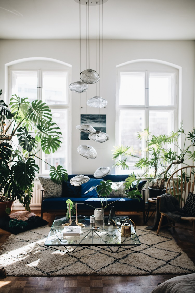 Salon Scandinave Plantes