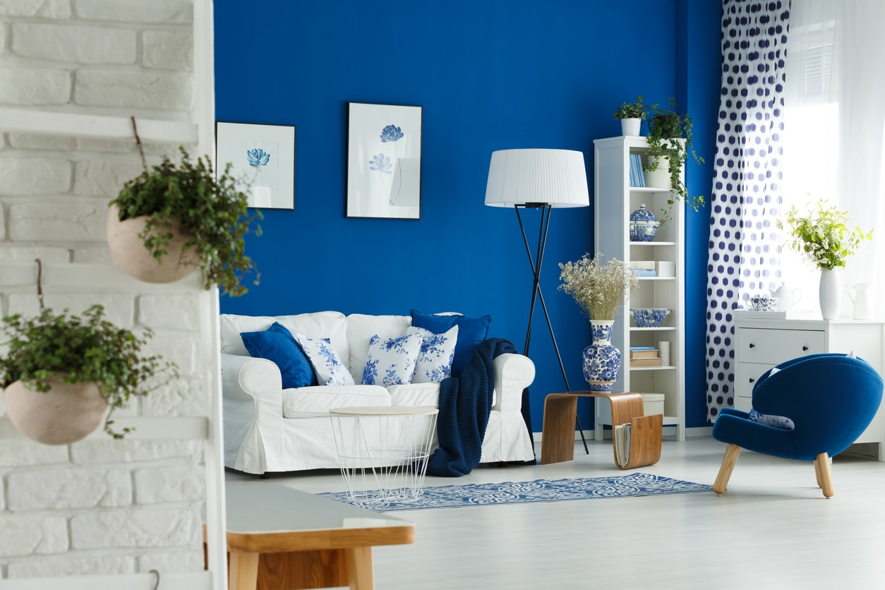 Plantes Dans Un Salon Bleu Pétrole