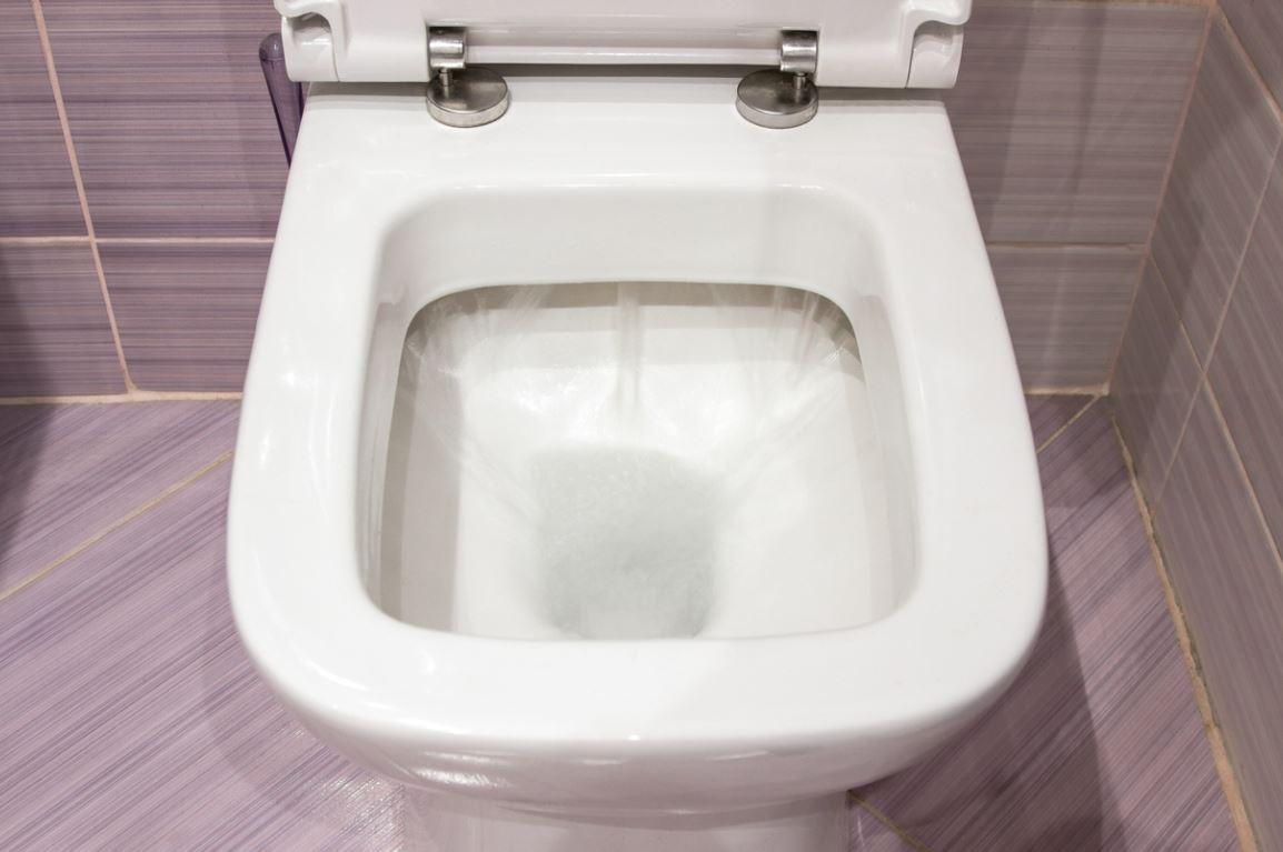 Deboucher Toilettes Sanibroyeur