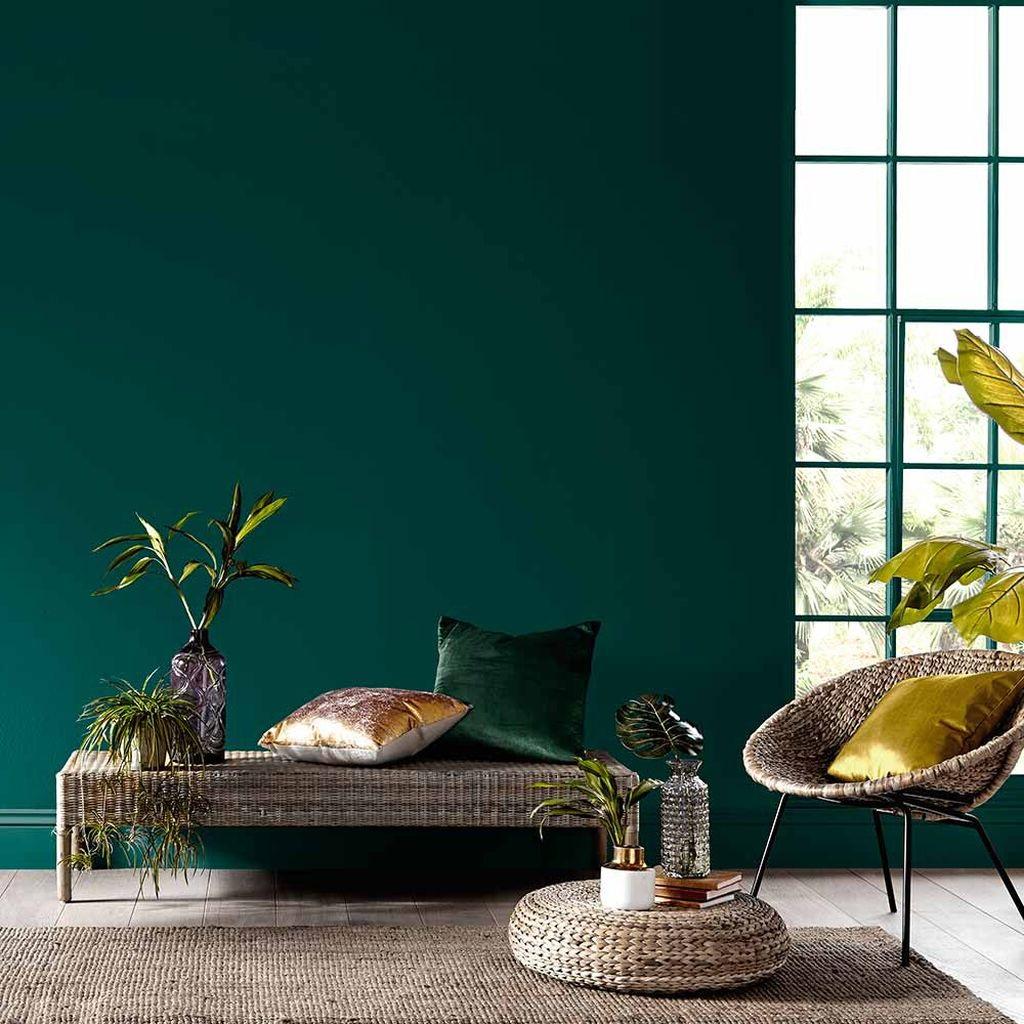 Vert Sapin Et Deco Organique