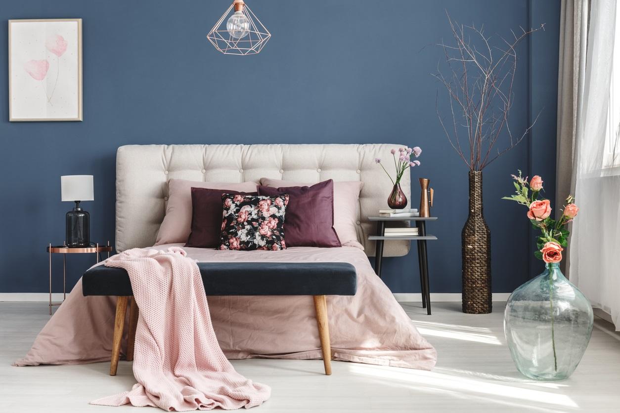 Association De Rose Et Bleu Pour Une Décoration De Chambre Douce