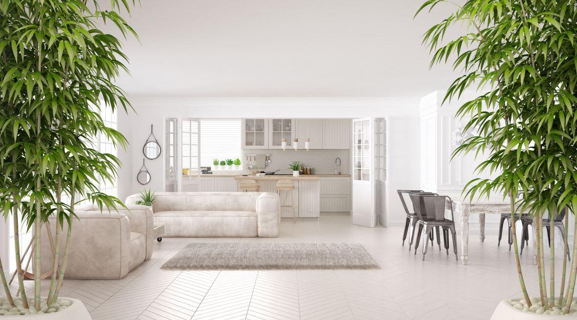 Salon Blanc Minimaliste Et Zen, D'inspiration Feng Shui