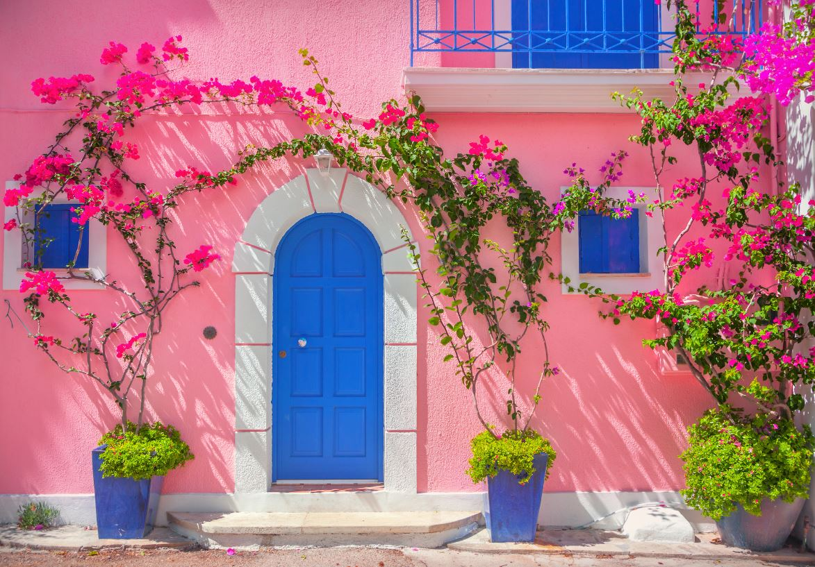 Rose Et Bleu Majorelle