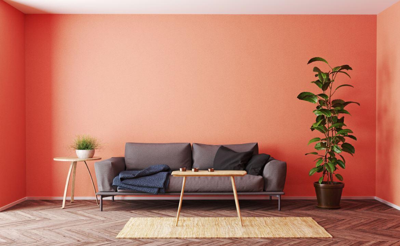 Peinture Murale Chaleureuse De Ton Terracotta Pour Un Salon Convivial