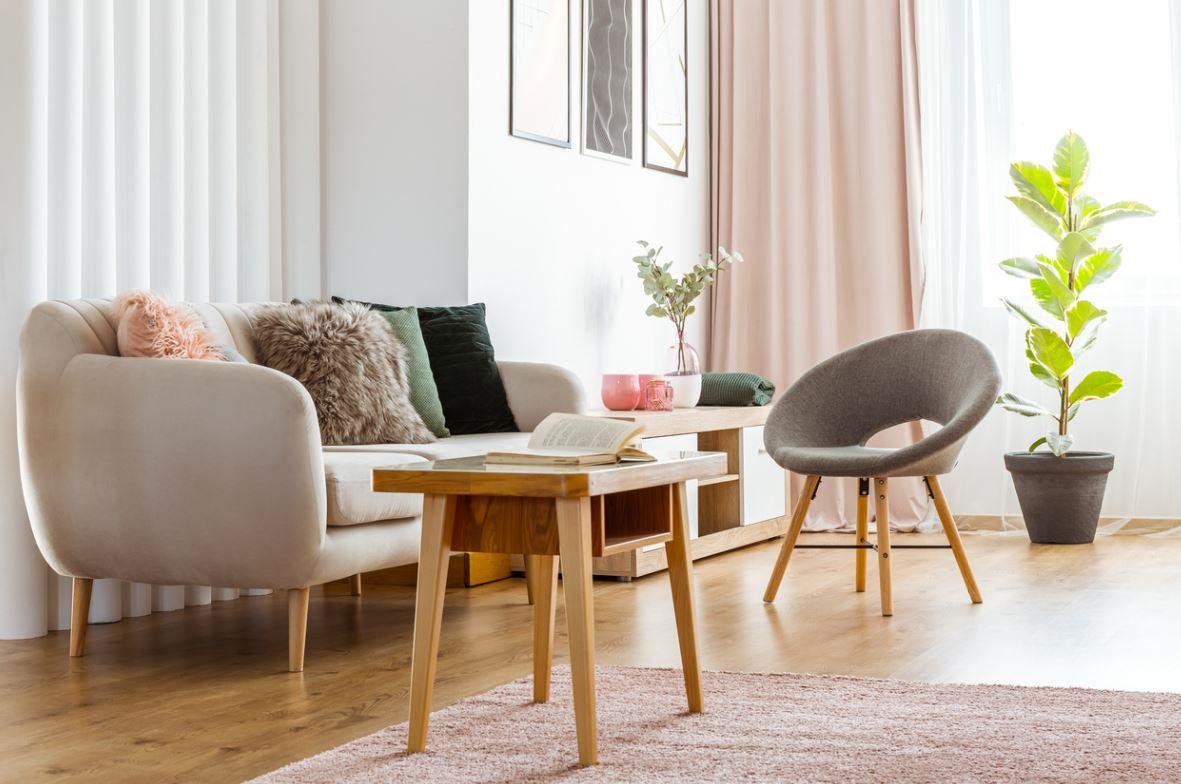 Salon Avec Un Mobilier Scandinave Pastel