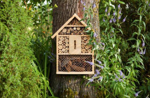 Maison A Insectes