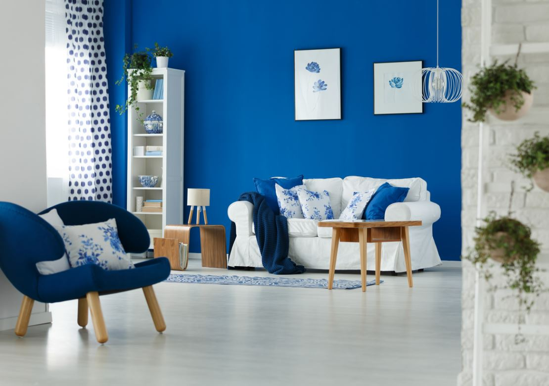 Salon Bleu Roi Et Blanc