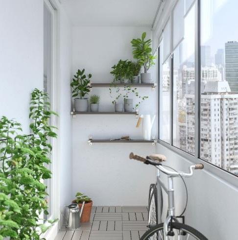 Ensemble De Trois étagères Murales Grises Pour Créer Un Mur Végétalisé