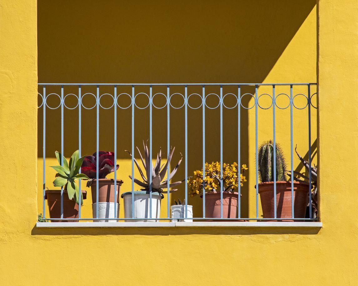 Balcon Naturellement Graphique