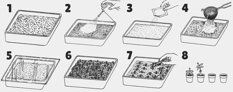 9 Semer Etapes