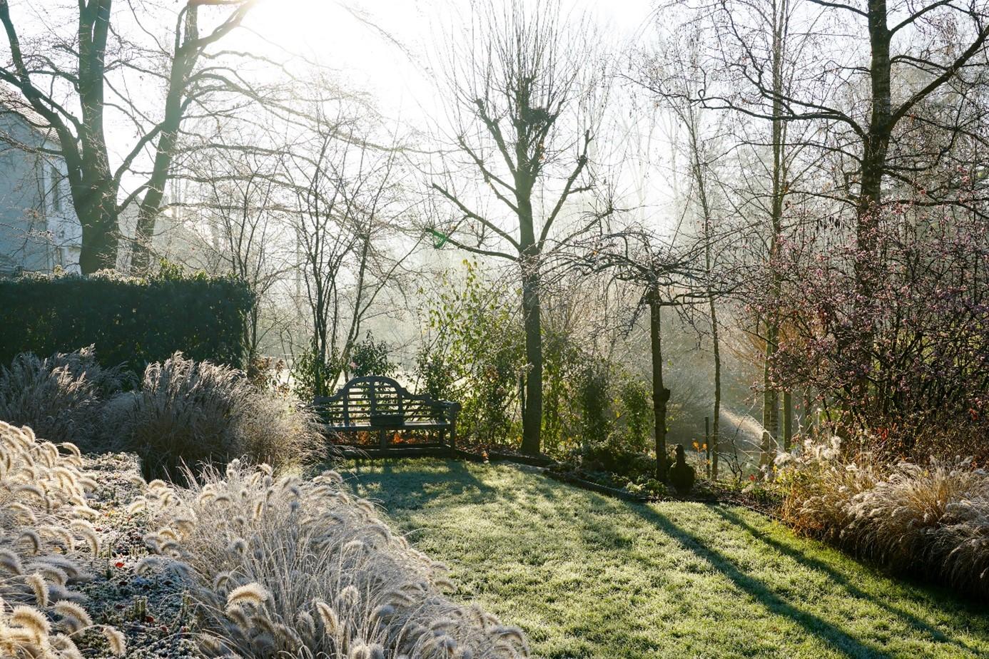 Jardin Hivernal