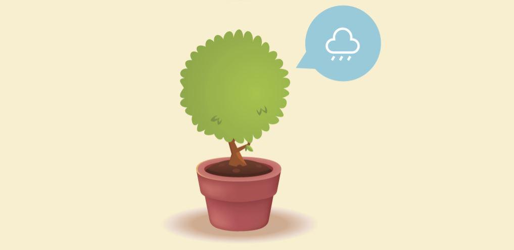 Illustration Plante Demande De L'eau
