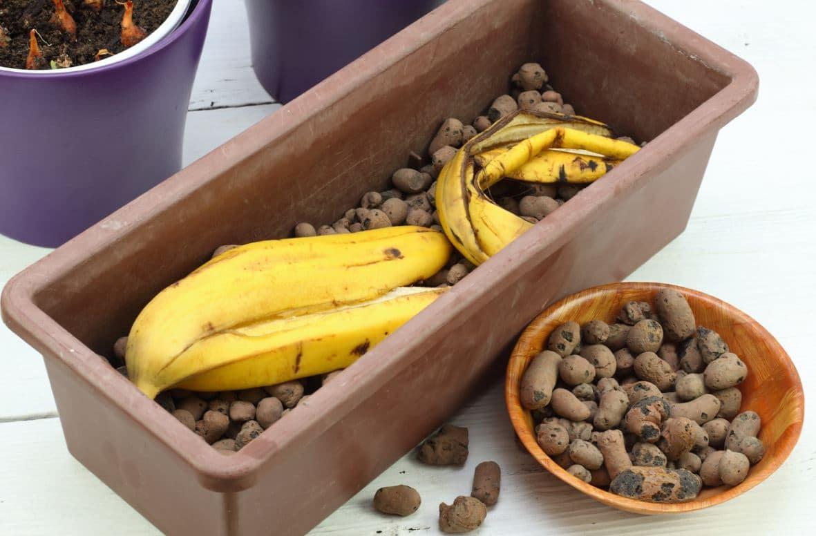 Peau Banane Engrais