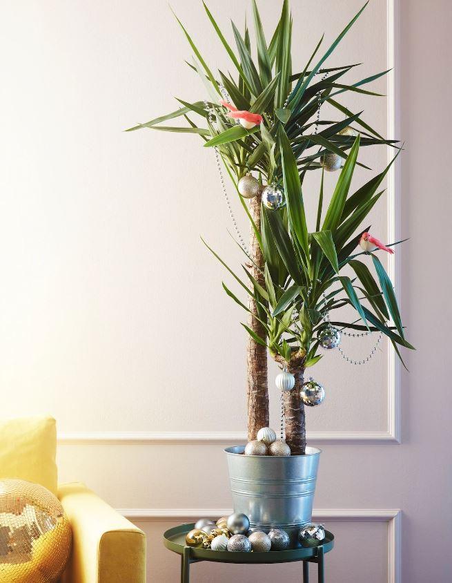 Plante Verte Decoree