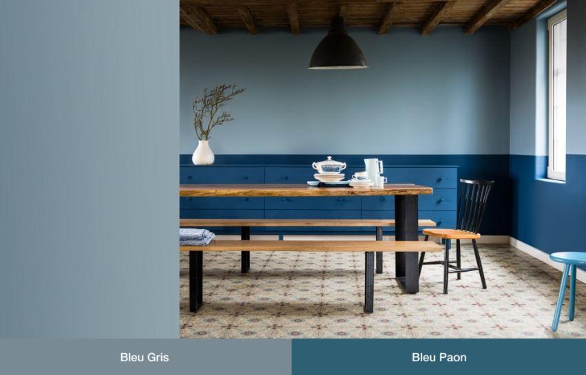 Bleu Paon Et Bleu Gris