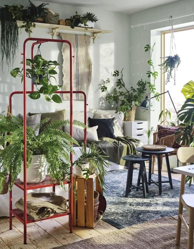 Un Studio Jardin D'hiver
