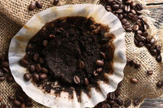 Marc De Café Filtre