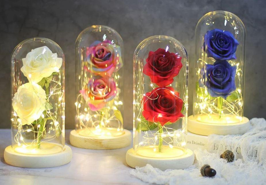 Rose Eternel Sous Cloche 3