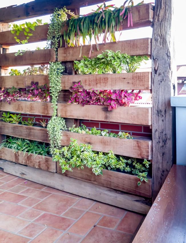 Une Bibliothèque De Plantes